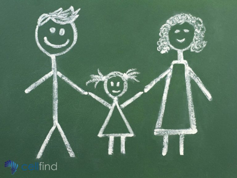 Communication with Parents What Are The Best Options for Schools and Teachers