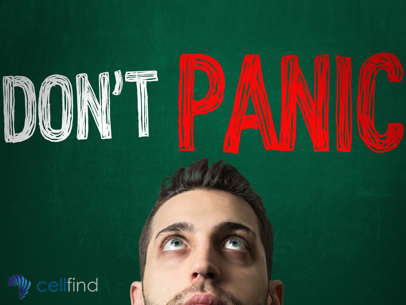 The Rise and Rise of the Mobile Panic Button